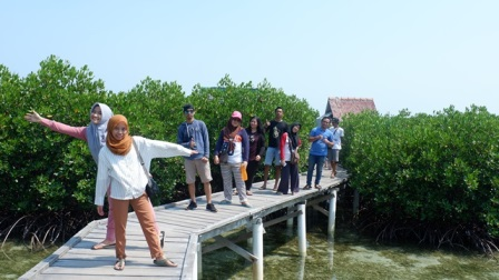 Pertanian Mangrove Jadi Spot Foto Pengunjung/Ilmy